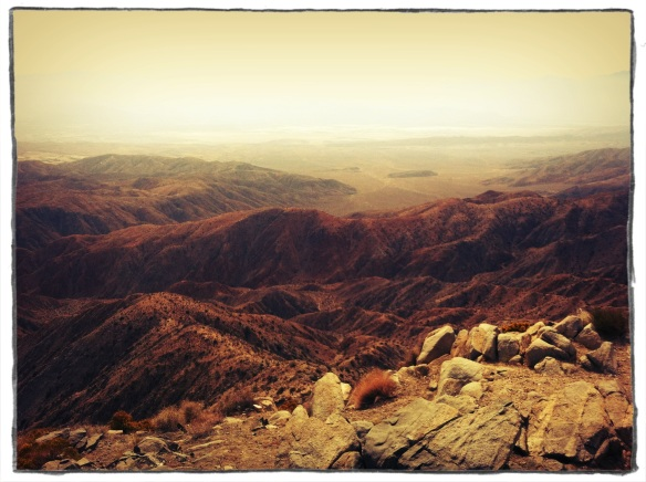 joshua tree overlook