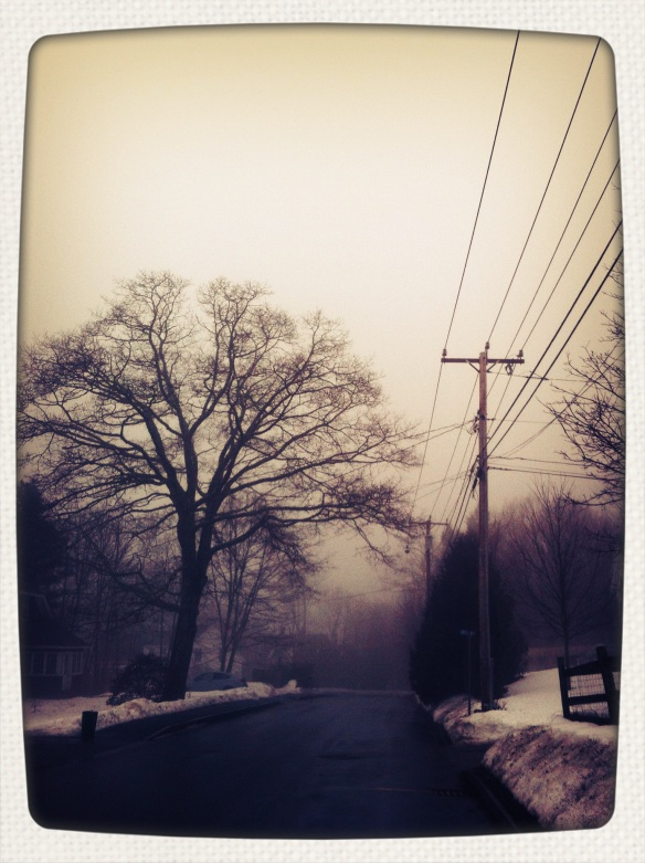 foggy january 1
