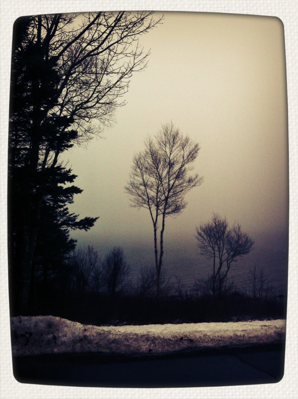foggy january 5