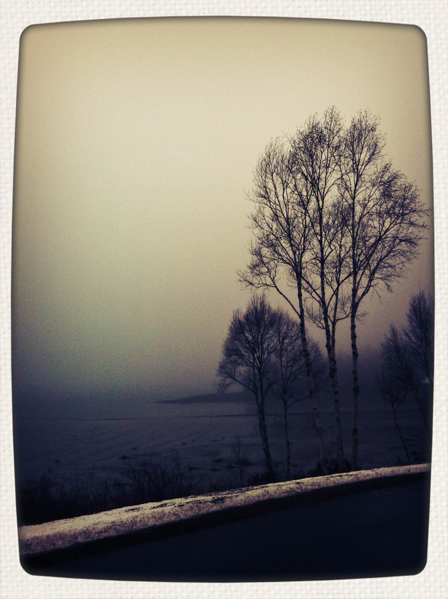 foggy january 6