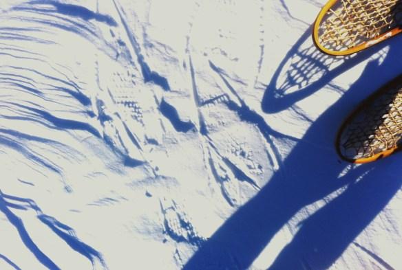 snowshoeing5