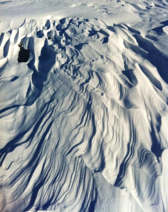 snowshoeing6