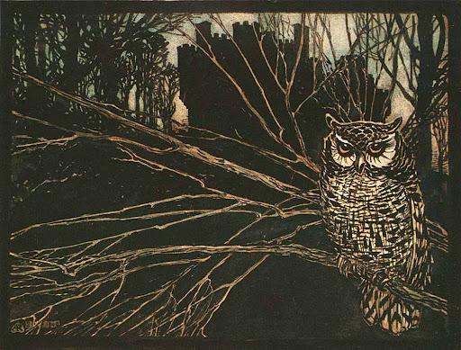 owl by arthur rackham